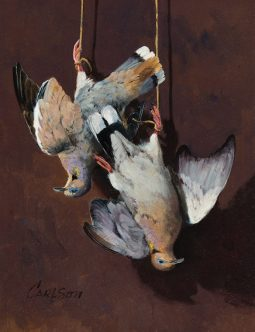 Still Life with White Winged Dove