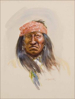 Apache Warrior #7
