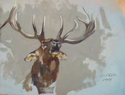 Collection of 2 Paintings – Elk